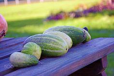 #cucumber - #cucumber