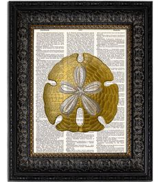SAND DOLLAR I Art Print is printed directly onto an up-cycled Vintage Dictionary Page for a unique piece of wall art that will work with any