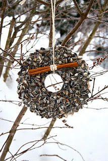 Winter bird feeder wreath