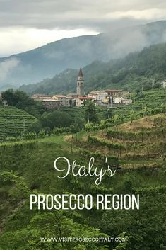 Did you know Italy's Prosecco region is one one hour from Venice making it the perfect day trip from Venice…or why not stay for a few nights. An ideal wine tasting tour from Venice, get to know Italy's under-discovered Prosecco region. Even in the morni Italy Travel Tips, Rome Travel, Travel Abroad, Travel Guide, Travel Destinations, Day Trips From Venice, Wine Vineyards, In Vino Veritas, Italian Wine