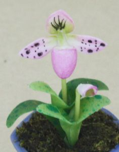 Dollhouse Miniature Clay Lady Slipper Orchid by kanyanat on Etsy, $2.55
