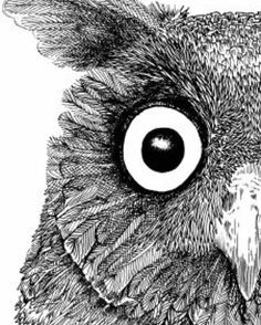 A working progress for an album cover for a band from London. Tying up the detail and will show u soon. #albumcover # music #rockband #indieband #musicillustration # album art #albumillustration #owl #owlart #owl #euroasianeagleowl #eagleowl #nature #natureart #tw http://ift.tt/2fUN0u0