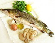 Щука - Рецепты блюд из щуки - Как правильно приготовить щуку - Как