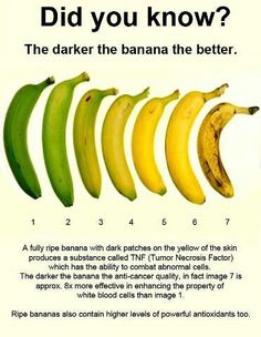 The banana is a delicious and very popular fruit that also has many health benefits. A recent study found that ripe bananas are a powerful anti-carcinogenic fruit. Ripe banana, an anti-carcinogenic fruit According to a research group Banana Fruit, Banana Peels, Banana Energy, Banana Bread, Ripe Fruit, Healthy Tips, Recipes, Healthy Snack Foods, Vinegar