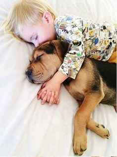 #love #animal #dog