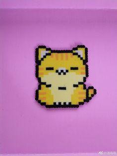 Cat perder beads