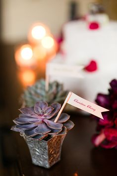 """For DIY Wedding Inspiration, or Garden Party. Found searching """"eco friendly"""" on my account. Unique Weddings, Real Weddings, Diy Wedding Inspiration, Wedding Ideas, Seating Cards, Cacti And Succulents, Succulent Ideas, Botanical Wedding, Wishing Well"""