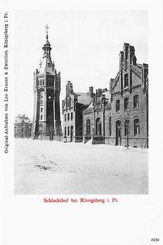 Кенигсберг, Бойня