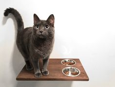 Wall Mounted Cat Feeder, Cat Food Bowls Food Station Cat Shelf, Cat Feeding Dining Station Cat Furniture Accessories Cat Care Hand Made Wood by CatWallFurniture on Etsy https://www.etsy.com/listing/506289959/wall-mounted-cat-feeder-cat-food-bowls