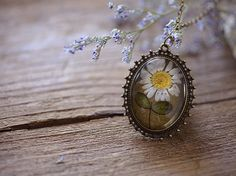 Daisy vintage necklace, dried flower, plant, specimens, daisy necklace, vintage, handmade, diy, original, limited, retro, natural. See more on https://www.etsy.com/shop/snhflowers