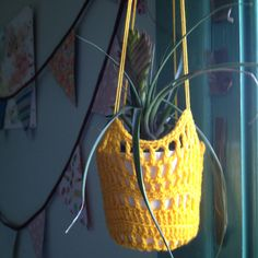 Crochet hanging plant holder