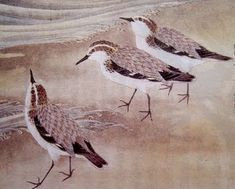 Plovers - Japanese
