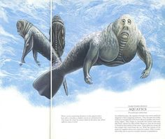 aquamorphs ou aquatics, seres humanos marinhos com brânquias em vez de pulmões para respirar debaixo d'água que evoluirão durante cerca de 50.000 anos.
