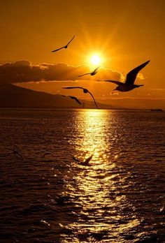 Sunset from the Ferry – Izmir - Naturbilder Amazing Sunsets, Amazing Nature, Amazing Places, Sunset Photography, Landscape Photography, Nature Pictures, Beautiful Pictures, Beautiful Sunrise, Beautiful Landscapes
