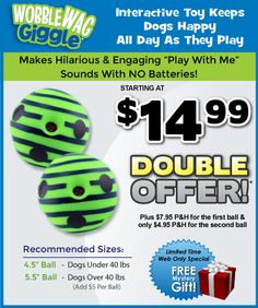 Wobble Wag Giggle~ just saw this commercial on tv. Macy was staring at the tv while the dogs squeaked the ball. I may look for this ball in stores but it looks like they're only selling it on line right now.