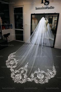 Wedding Veil, Lace Wedding, Wedding Dresses, Lace Veils, Fashion, Bride Dresses, Moda, Bridal Gowns, Fashion Styles