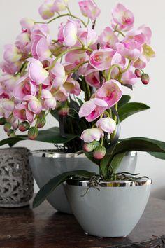 Komplet - dwie ekskluzywne kompozycje kwiatowe wykonane z wysokiej jakości sztucznych kwiatów, orchidei.  Storczyki, które zostały użyte do wykonania tych pięknych dekoracji mają mięsiste, wyjątkowo realistyczne, jasnoróżowe kwiatostany. Na ich szczycie pojawia się od kilku do kilkunastu kwiatów i pąków różnej wielkości.  Z eleganckich, milimalistycznych, jasnoszarych donic (ładnie dobranych do odcienia jasnoróżowych kwiatów) wyrastają misternie zamocowane grube, niczym naturalne, liście…