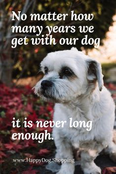 ❤️ Dog Quotes Love and Loyalty HappyDog.Shopping Source by LeChriNa Puppy Quotes, Dog Quotes Love, Cat Quotes, Animal Quotes, Dog Best Friend Quotes, Dog Loss Quotes, Dog Sayings, Mans Best Friend, Pet Dogs