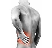 Back Pain Advice. Suffer From Back Pain? Here's Some Great Advice. When you have back discomfort, no one will feel the same way! Sometimes the back just feels stiff, but other people will feel stabbing pain. Psoas Muscle, Muscle Pain, American Diet, Tight Hip Flexors, Sciatic Nerve, Sciatic Pain, Low Back Pain, Back Pain, Sciatica
