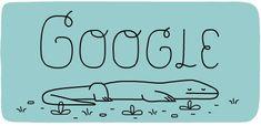 37º Aniversário do Parque Nacional de Komodo