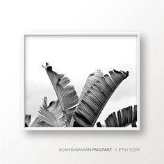 Tropical wall art, tropical leaf, palm leaf, tropical print, tropical poster, botanical art, palm tree black and white, tropical palm art