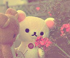 rilakkuma images, image search, & inspiration to browse every day. Rilakkuma, Cute Kawaii Animals, Kawaii Cute, Teddy Beer, Teddy Toys, Bear Wallpaper, Kawaii Shop, Wholesome Memes, Editing Pictures
