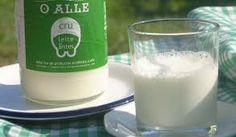 leche sin pasteurizar 'o alle' + leche de verdad + una pareja de ganaderos de lalín pioneros en producción de leche cruda, sin pasteurizar + Las vacas de O Alle producen entre 10 y 12 litros de leche por vaca al día y viven entre 15 y 20 años, frente a los 40 y 50 litros por vaca de las vacas de explotaciones intensivas, cuya edad no supera los 5 años de vida