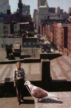 Slide Show : The Color Photographs of Helen Levitt