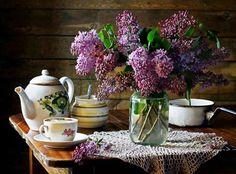 Lilas et café