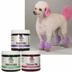 Doggie hair dye! How did I not know about this stuff??