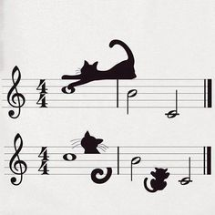 (cats make their own kind of music.)