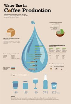 Water use in Coffee Production #coffee #coffeeproduction #infographic #viqua #uvmax