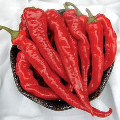 Hot Portugal Pepper - Seed Savers Exchange
