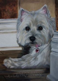 lacy - west highland white terrier oil painting, painting by artist anne zoutsos ♥