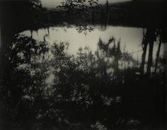 SALLY MANN  Avery Island II, 1998 (epic)