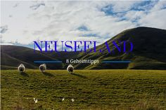 Neuseeland GEHEIMtipps