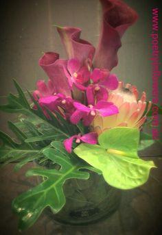 Corporate Flowers - short vase, mix of singapore orchids, calls lillies, anthuriums & protea