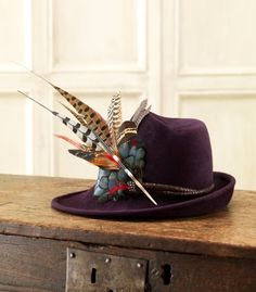 Velour Sidesweep Hat With Leather Band And Feathers Purdy