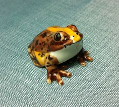 Miniature Ceramic Frog Toad Animal Cute Little Tiny Small Brown Orange Figurine Statue Decoration Hand Painted Collectible Craft Figure