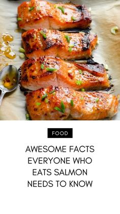 Salmon is a superfood and you've probably heard that you should be eating it on a regular basis. This type of fish is really healthy and is… Organic Salmon, Can Salmon, Frozen Salmon, Organic Recipes, Ethnic Recipes, Reap The Benefits, Salmon Patties, Food Preparation, The Fresh