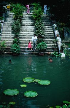 Bangladesh-Children swimming in pond in Baldha Gardens, Wari.