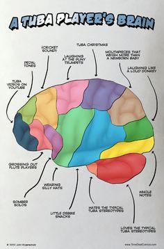 Tuba player's brain