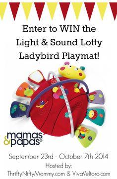 Win Lotty Ladybird
