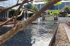 Pool area - St. Regis Bangkok in Thailand - Luxury #hotel by #spg and #starwood in #bangkok