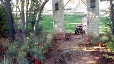 designing the yard