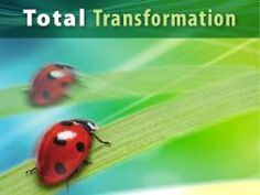 Browse Media - Total Transformation - Amazing Discoveries TV