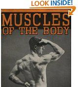 Free Kindle Books - Sports - SPORTS - FREE -  Muscles of the Body and How to Develop Them
