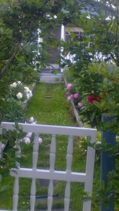 Gates summer 2014 Garden Cottage, Summer 2014, Gates, Outdoor Structures, Mom, Plants, Plant, Mothers, Planets