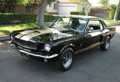 Ford Mustang 1966 Had it, loved it, lost it =(