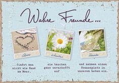 Wahre Freunde - Postkarten - Grafik Werkstatt Bielefeld
